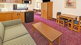 Microtel Inn & Suites Dallas At Highway Suite