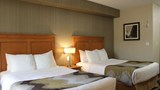 Best Western King George Inn & Suites Room