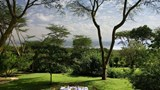 Sarova Lion Hill Game Lodge Other