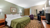 Quality Inn & Suites Savannah North Room