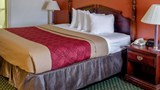 Econo Lodge Inn & Suites Room