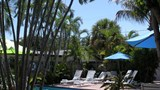 Las Olas Guesthouse Pool