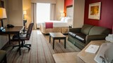 Holiday Inn Hotel & Stes Lake Charles W Suite