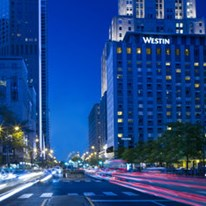 Find hotels near the whitehall hotel chicago il hotels for Boutique hotels chicago michigan avenue