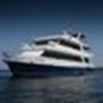 Letty Cruise Schedule + Sailings