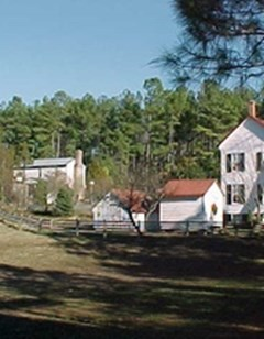 Piney Grove at Southall's Plantation