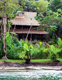 Copa De Arbol Beach & Rainforest Resort
