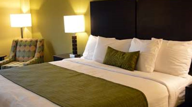 Best Western Plus Thornburg Inn & Suites Room