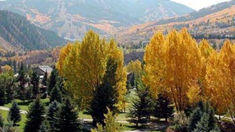 Beaver Creek West Other