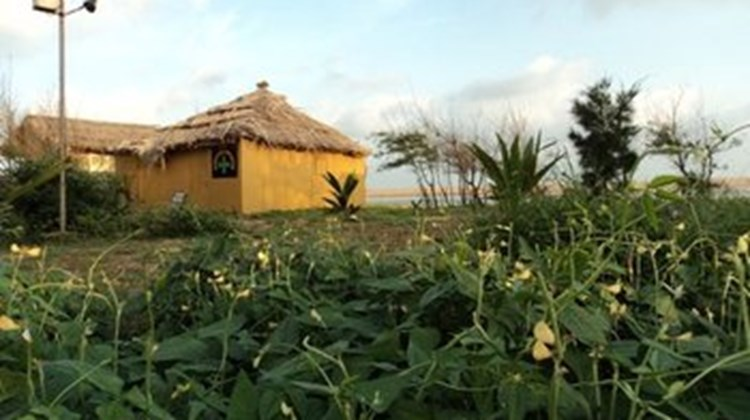 Lotus Resort Ramchandi Beach-Konark Recreation