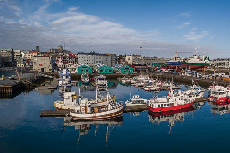 Harbor in Reykjavik - pleasure craft and small fishing boats mix with whale watching and puffin watching boats.