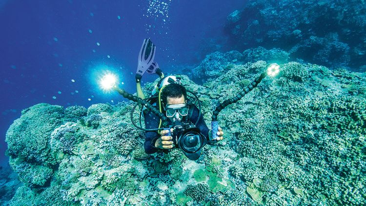 Lindblad has built robust enrichment teams for its expedition cruises, including this underwater photographer/videographer.