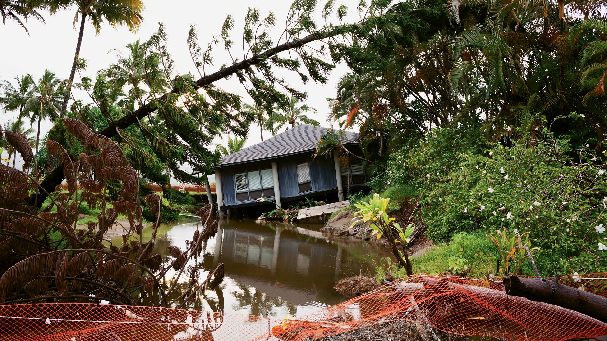 A flood-damaged house in Hanalei. The disaster gave locals the chance to address overcrowding. Photo by Mayakova/Shutterstock.com