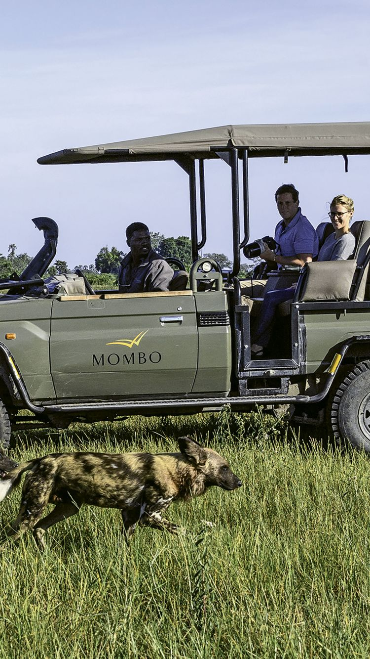There are still vast swathes of wilderness areas and intact ecosystems in Africa, and a game drive remains one of the best ways to enjoy these areas.
