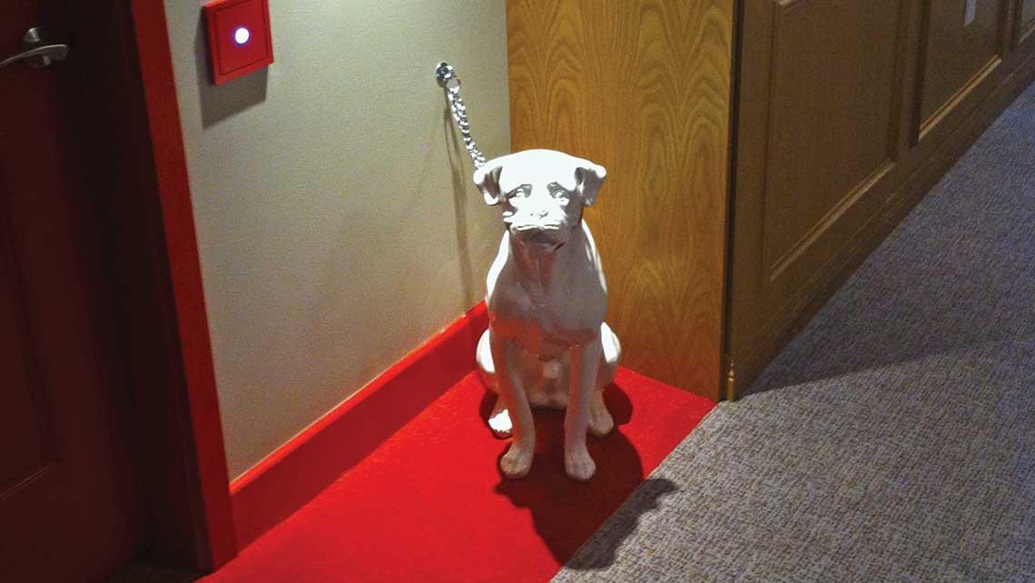 Do Virgin Trains Take Dogs