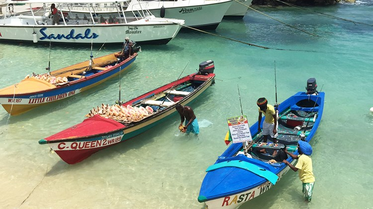 Fishing boats pull up alongside the dock at Sandals Ochi Beach Resort to display the catch of the day and shells from the sea.