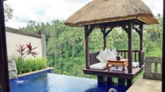 Resorts make Bali worth the journey