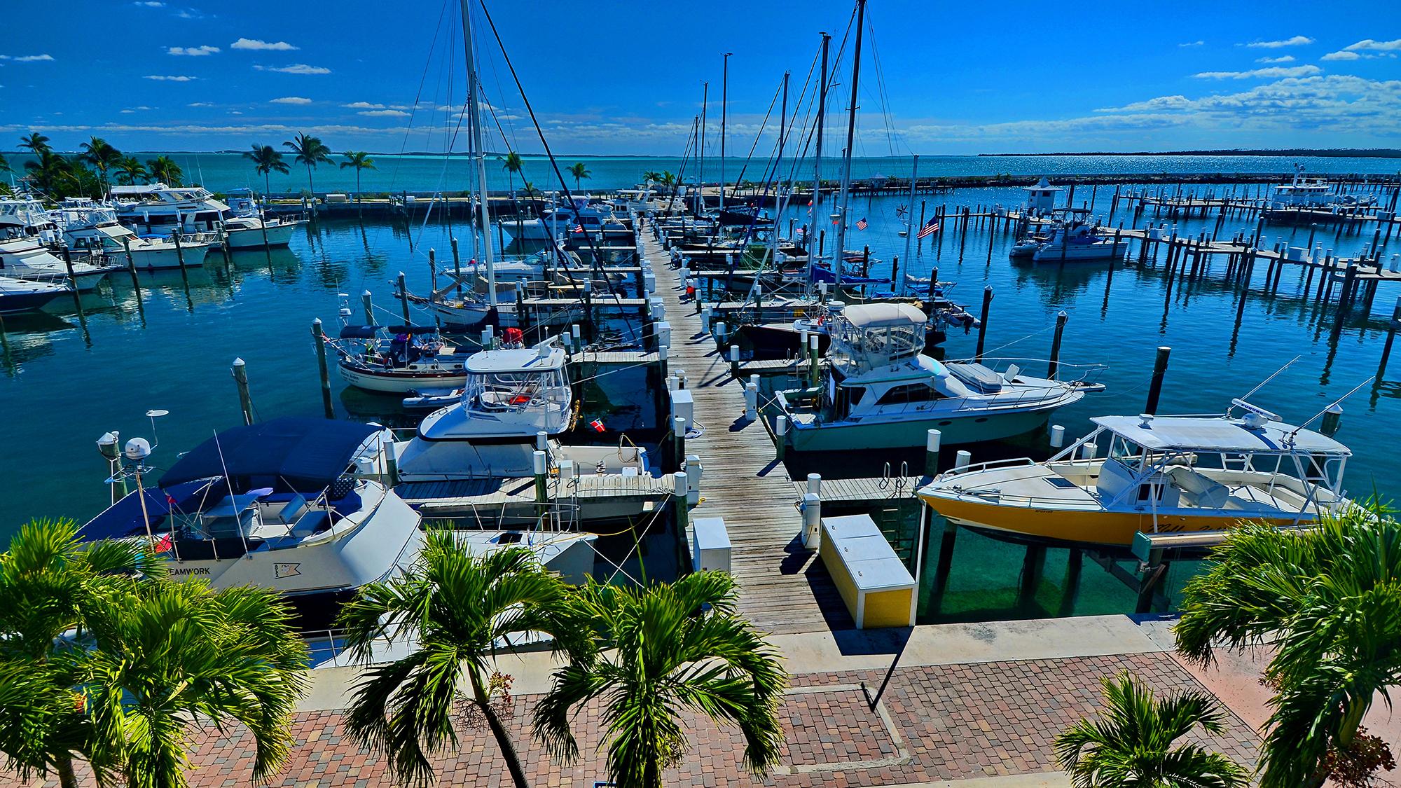 Bahamas Abaco Beach Resort an easy choice
