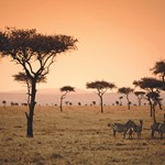 Discovering Kenya through its conservancies