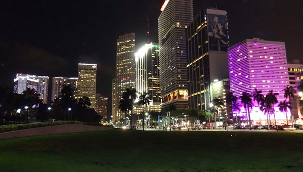 Downtown Miami's Bayside Park is framed by the InterContinental in the distance and YVE Hotel in the foreground.