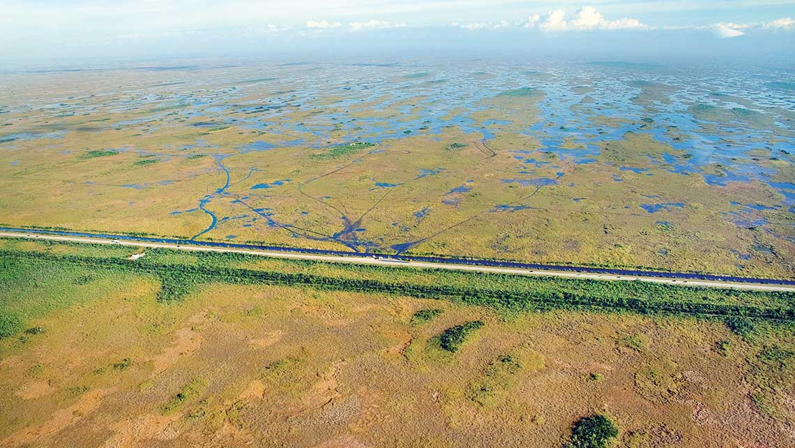 A highway blocks natural water flow south in the Everglades, leaving the park below the road parched while areas north are inundated with water.