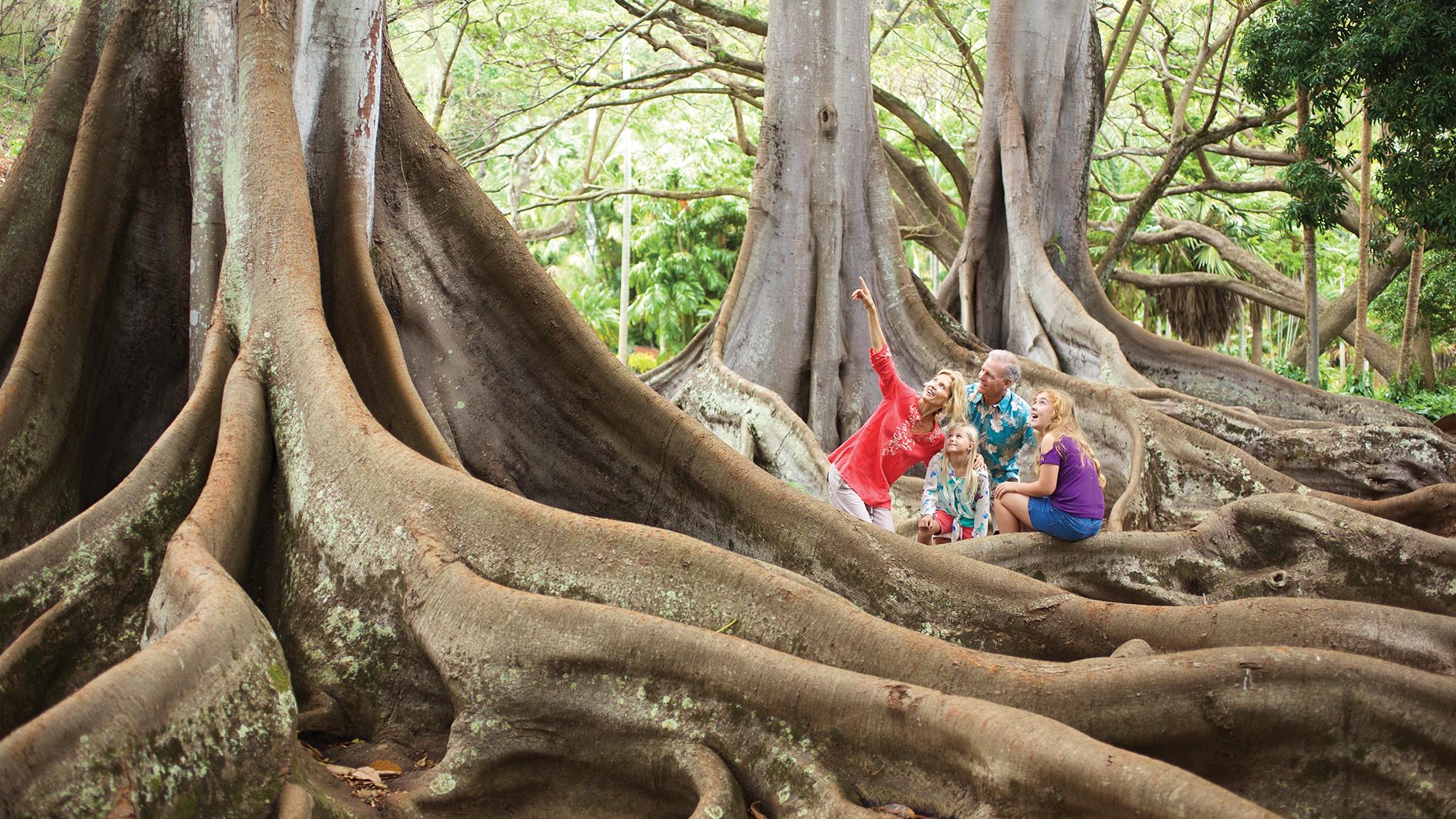 Tropical gardens awaken the senses Travel Weekly