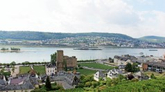 Germany's Rudesheim region is home to countless castles and vineyards.