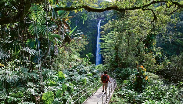 Akaka Falls near Hilo, among the Big Island sites recommended by Jay Johnson of Coastline Travel Advisors.