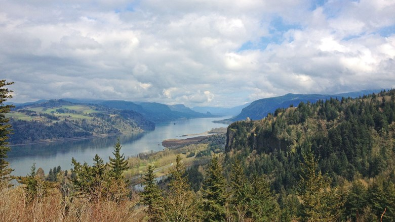 A view from an overlook of the Columbia River Gorge.