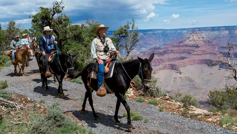 Visitors take a mule ride through Grand Canyon National Park.