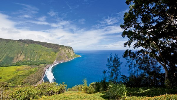 Waipio Valley, a popular visitor destination that civil defense officials closed during the dengue fever high point, reopened in mid-March.