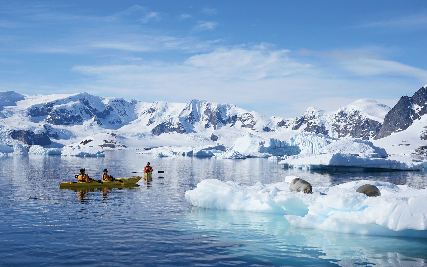 Kayakers from the Seabourn Quest get close to sea lions on an ice floe.