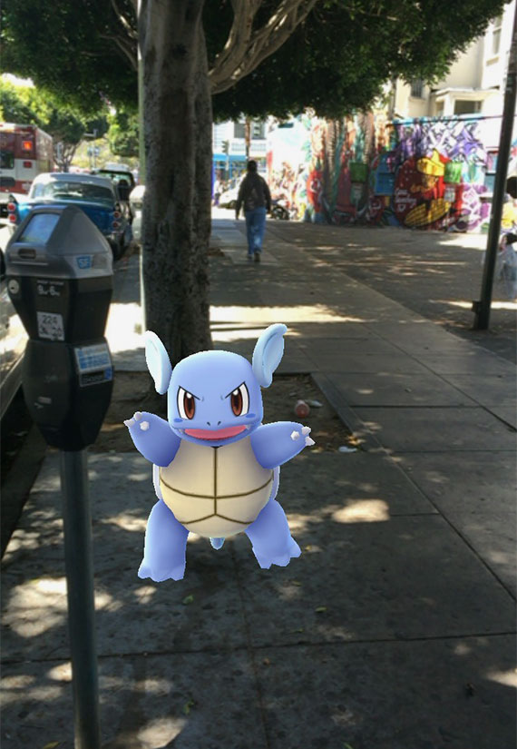 A Wartortle found on the streets of San Francisco.