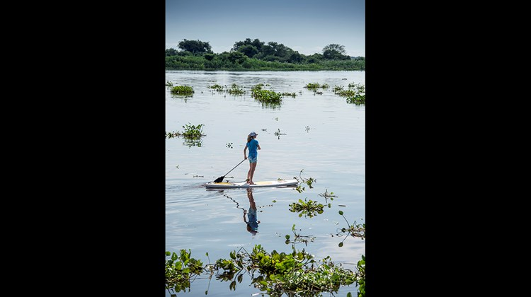 A woman goes paddleboarding on the Paraguay River on the outskirts of Corumba.<br /><br /><strong>Photo Credit: Mark Edward Harris</strong>