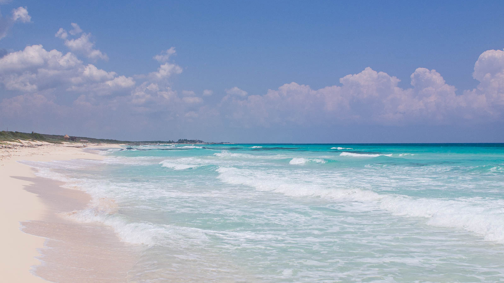 Where The Locals Go Cozumel Travel Weekly
