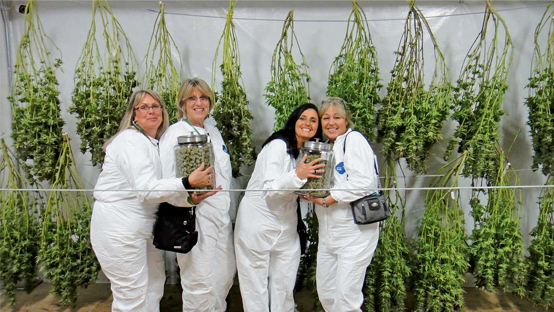 Guests on Kush Tourism marijuana excursions get up close with the product and see how it is grown and processed.