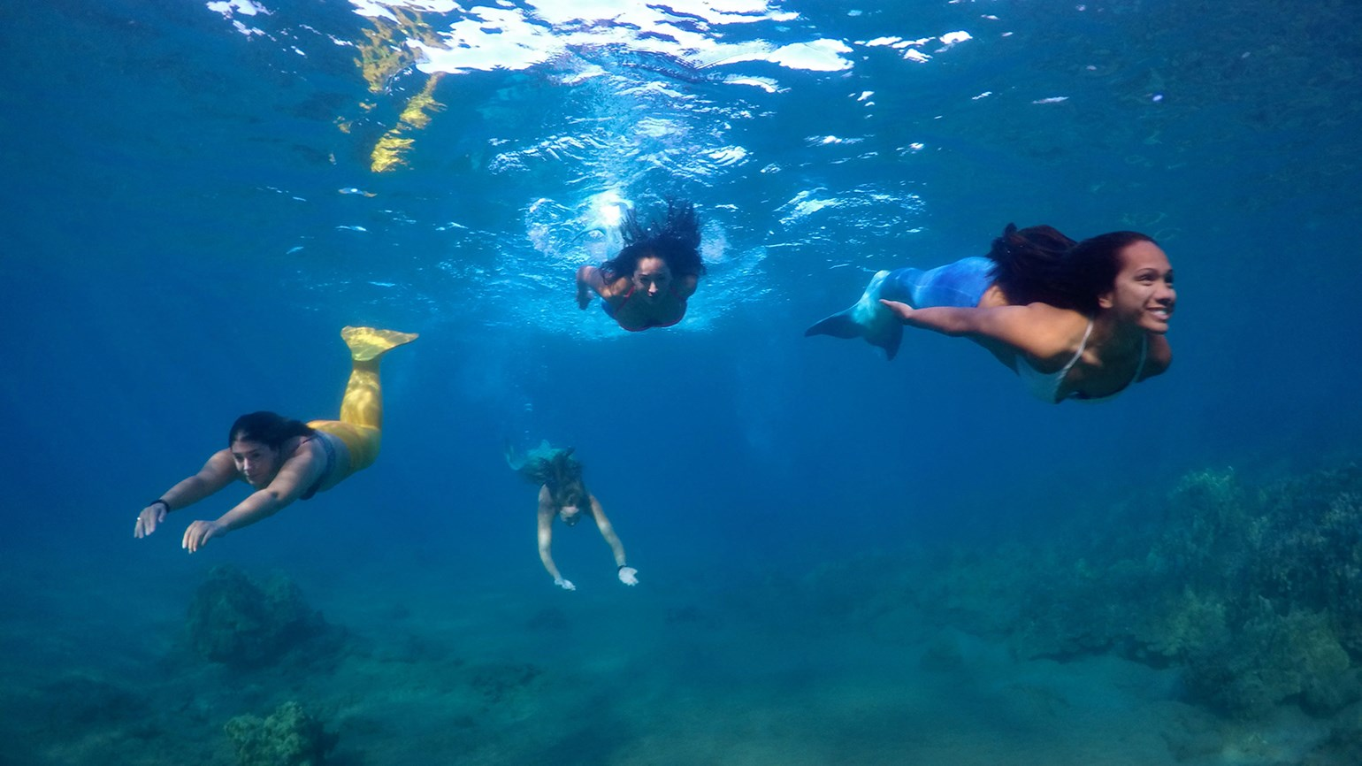 Maui welcomes new mermaid adventure