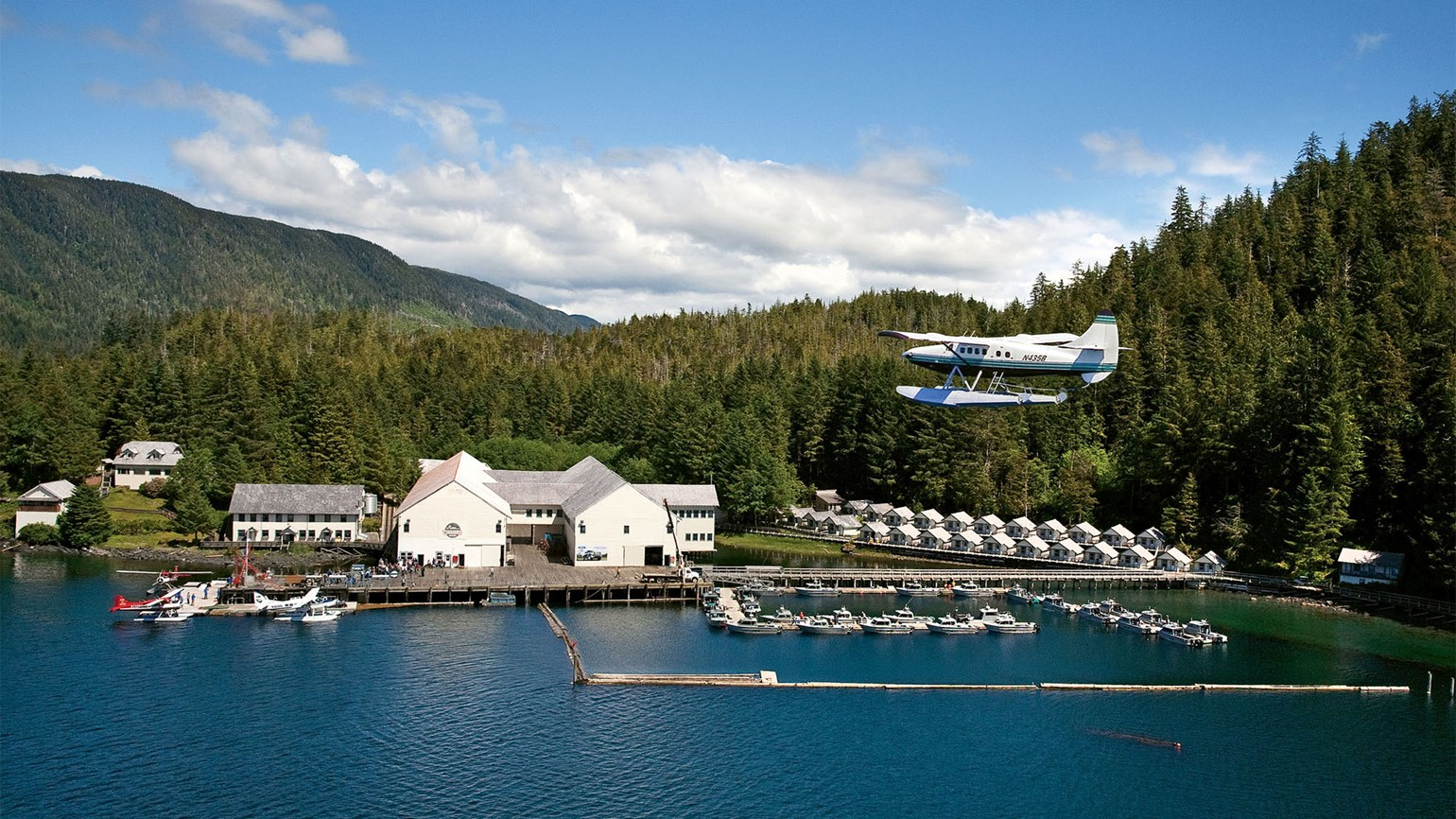 Waterfall Resort: Where salmon is king