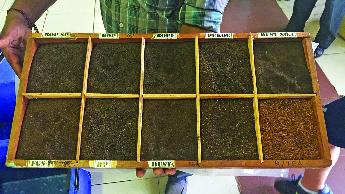 A tray holding various grades of tea produced in the Dambatenne Tea Factory near Haputale. The factory was founded by Thomas Lipton in 1890 and is open for tours that demonstrate the stages of tea production: fermentation, drying, rolling, cutting, sieving and grading. Photo Credit: Arnie Weissmann