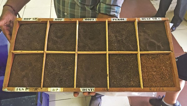 A tray holding various grades of tea produced in the Dambatenne Tea Factory near Haputale. The factory was founded by Thomas Lipton in 1890 and is open for tours that demonstrate the stages of tea production: fermentation, drying, rolling, cutting, sieving and grading.