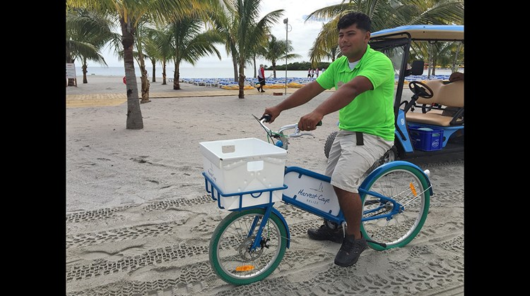 Harvest Caye has a fleet of bicycles to cut down on the number of motor vehicles used by staff.