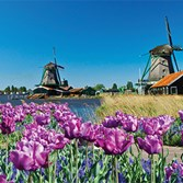 Netherlands and Belgium river cruise, $1,999