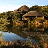 South Africa tour and safari, $2,999