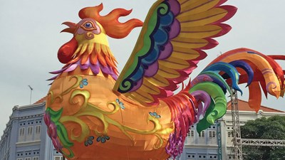 Assessing good and bad fortunes in the Year of the Fire Rooster