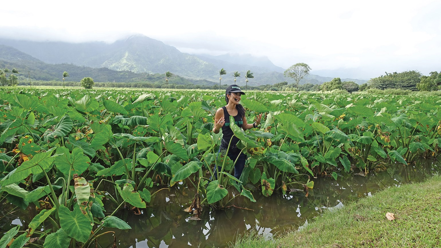 Local ingredients raise Kauai's food game
