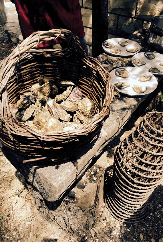Oysters from Ston are harvested by hand and served alfresco.