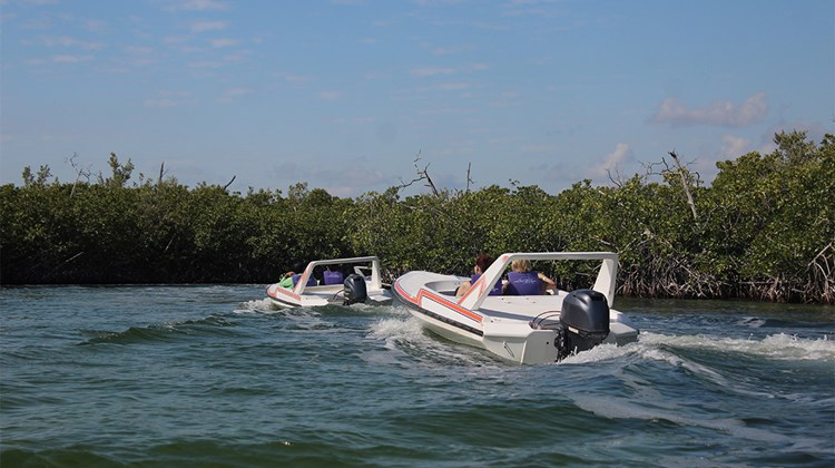 A self-drive boat tour of the Nichupte Lagoon and snorkeling excursion.