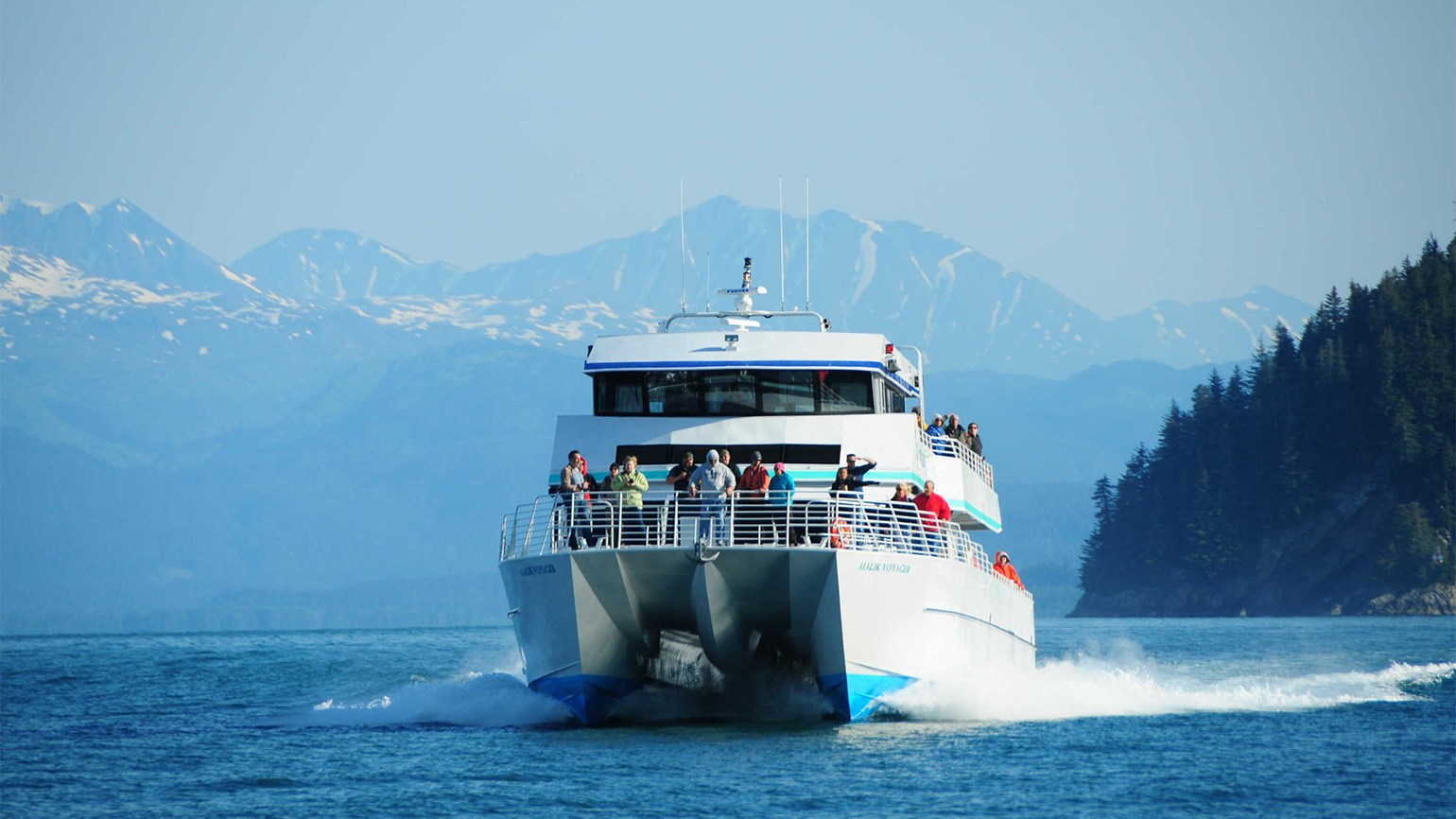 Kenai Fjords Tours offering gray whale cruises