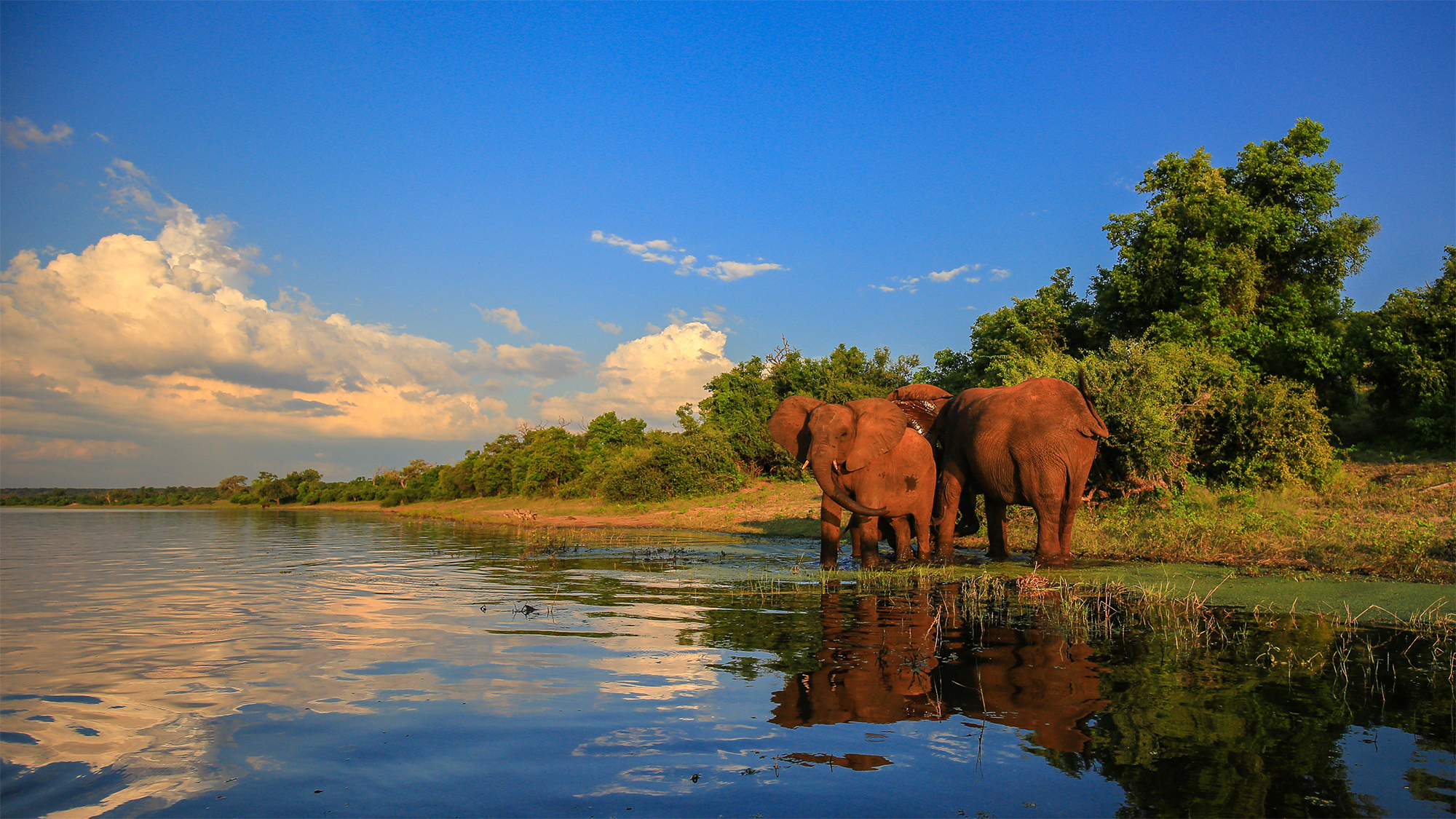mpumalanga kruger and then some travel weekly