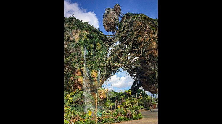 The floating mountains top out at 156 feet and create an aerial landscape that helps guests feel fully immersed in Pandora.